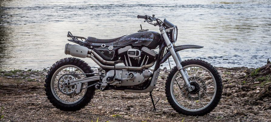 Three Harley-Davidson Sportsters That Don't Care What You