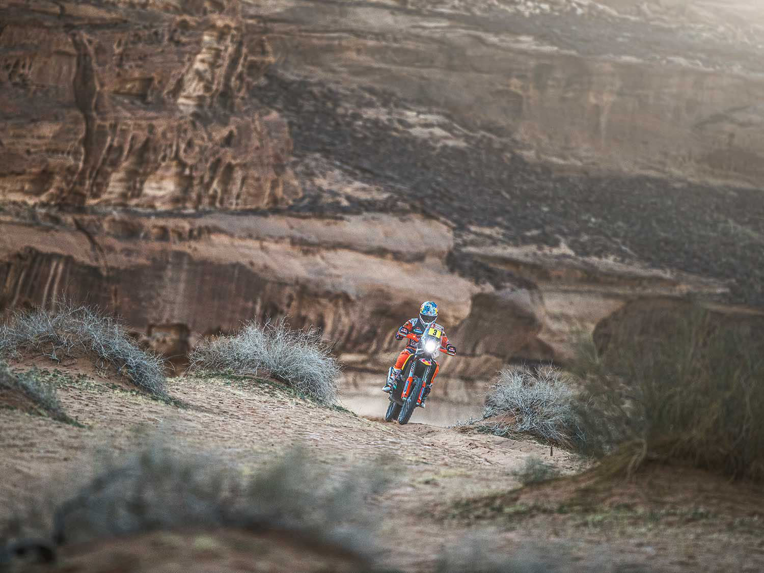 Sam Sunderland (Great Britain) races during Stage 5 of Rally Dakar 2020 from Al-'Ula to Ha'il aboard his Red Bull KTM Factory Team bike.
