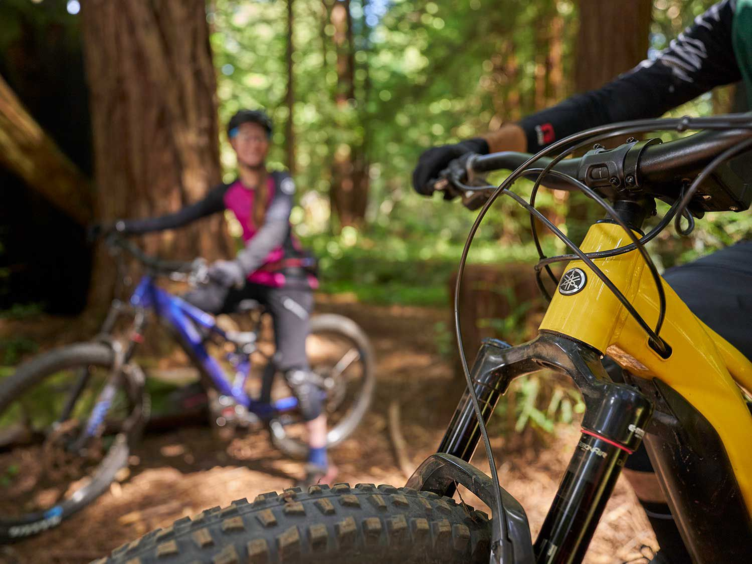 Yamaha continues to expand its powersport line with the addition of a pedal-assist bicycle division, Yamaha Bicycles.