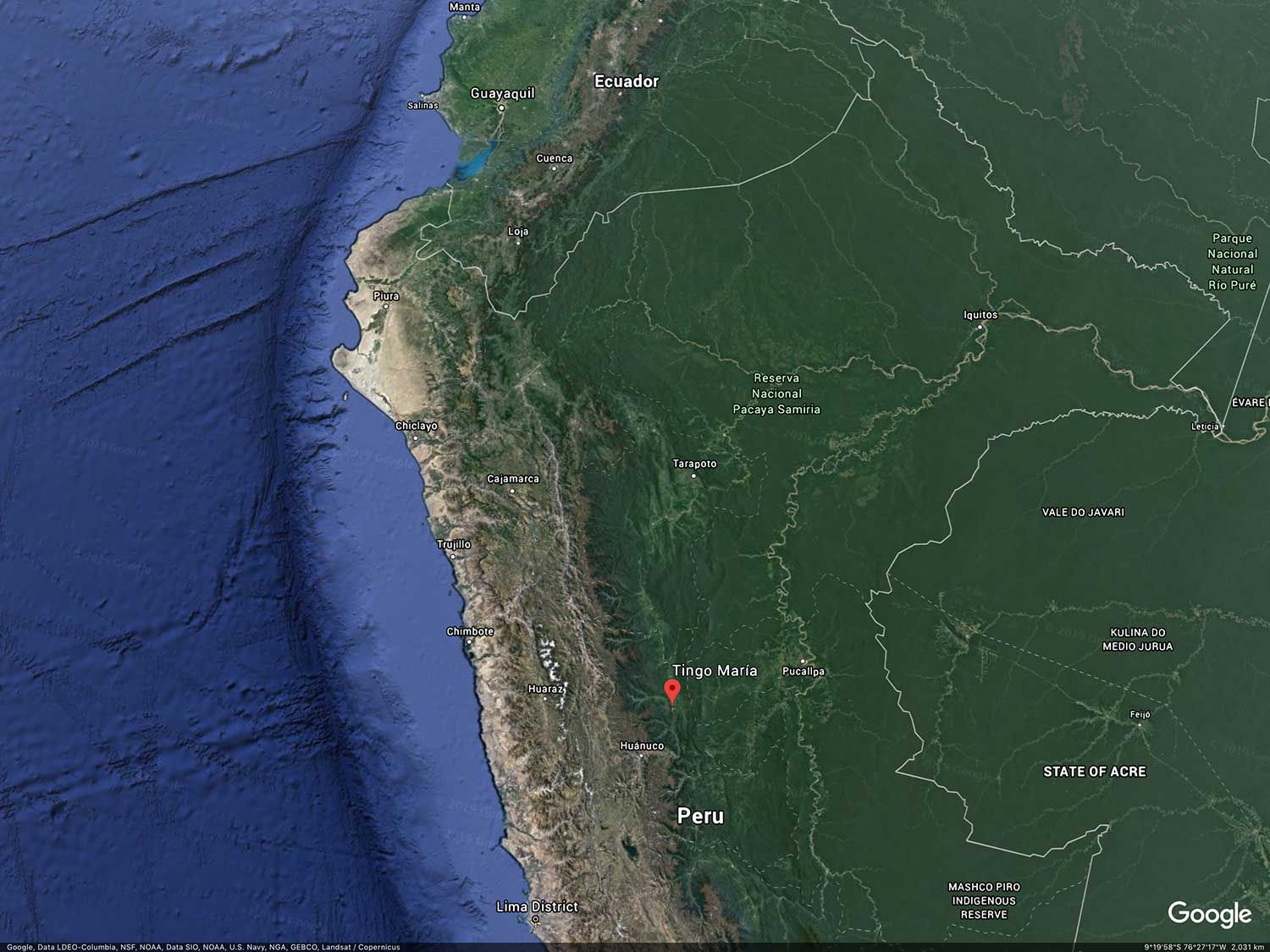 Tingo María is situated between the busy jungle port city of Pucallpa and Peru's capital, Lima, on the Pacific.