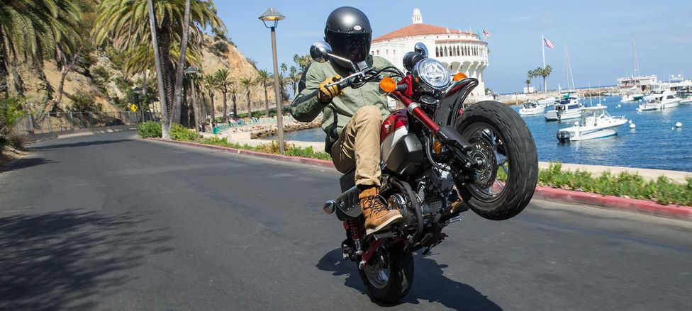 2019 Honda Monkey First Ride Review Motorcyclist
